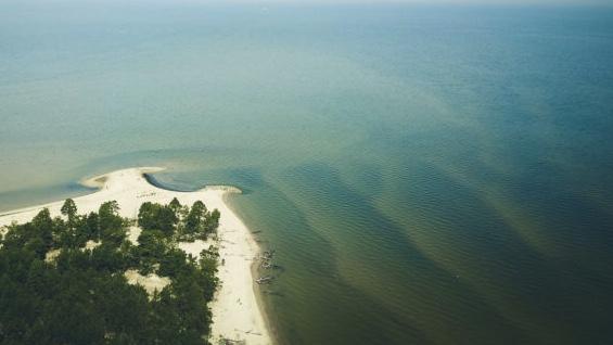 TO się dzieje w Bałtyku! Woda zaczyna…