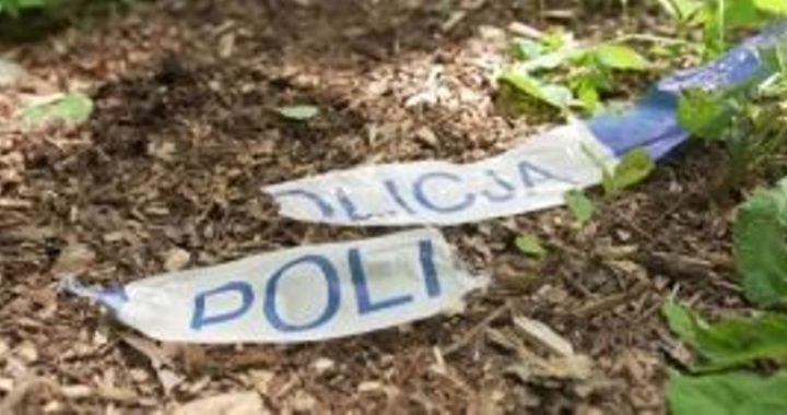 Jelenia Góra: Makabryczna śmierć 64-latka! Mężczyznę zaatakowały cztery agresywne (…)!