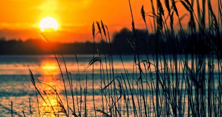 Zachodniopomorskie: Makabryczne odkrycie na dnie jeziora! Nurkowie wyciągnęli (…)