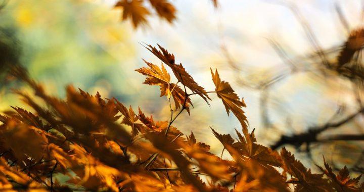 Jesienna depresja teraz zbiera największe żniwo! Co robić?