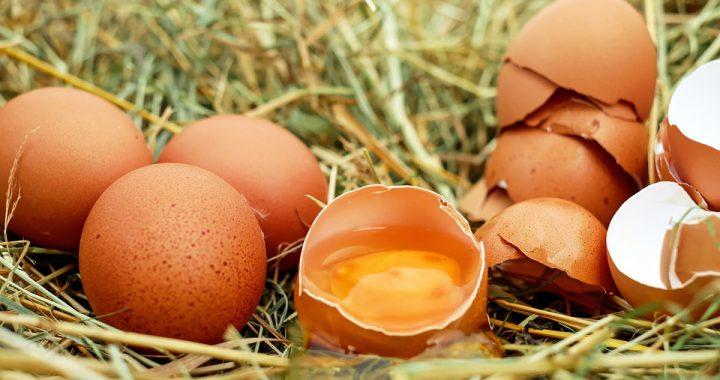 Założył się ze znajomym, że zje 50 surowych jajek! Pod koniec wyzwania doszło do tragedii!