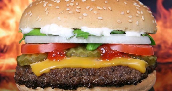 TAK wygląda hamburger z McDonald's po 10 latach! Nie uwierzycie.