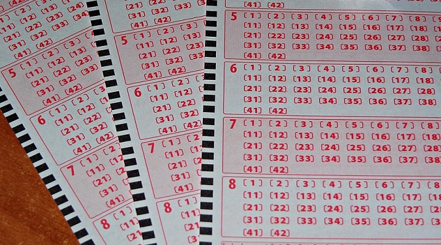 Wyniki lotto 14 listopada
