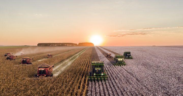 TEN ŚRODEK wywołuje raka i negatywnie wpływa na środowisko. Rolnicy stosują go na POTĘGĘ! Chodzi o…