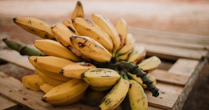 Już nigdy nie spojrzysz na nie tak samo! Banany i ich naturalne właściwości