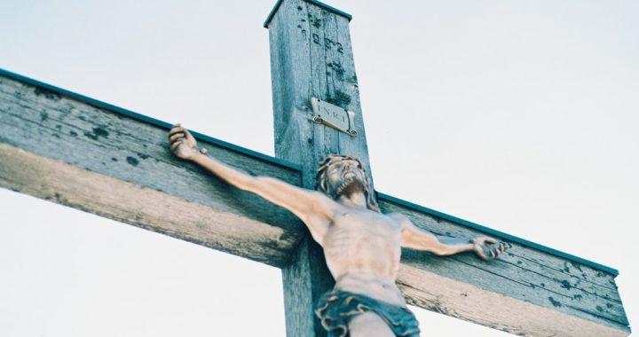 BESTIALSKA ZEMSTA za żarty z JEZUSA. Doszło do…[VIDEO]