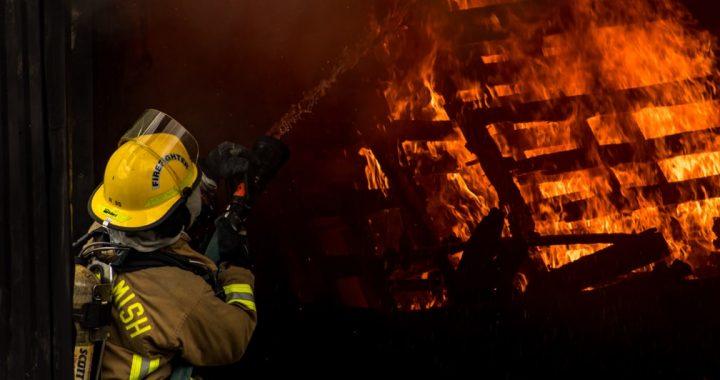 Ogromna tragedia w Wielkopolsce. Spłonęły żywcem SETKI zwierząt!