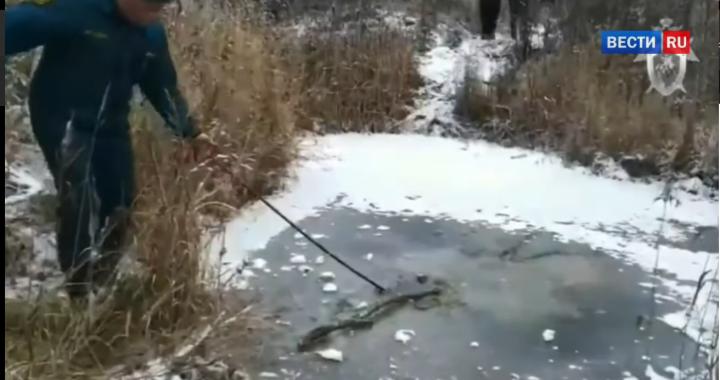 MAKABRYCZNE odkrycie w ROSJI. Pod pokrywą lodu odnaleziono…